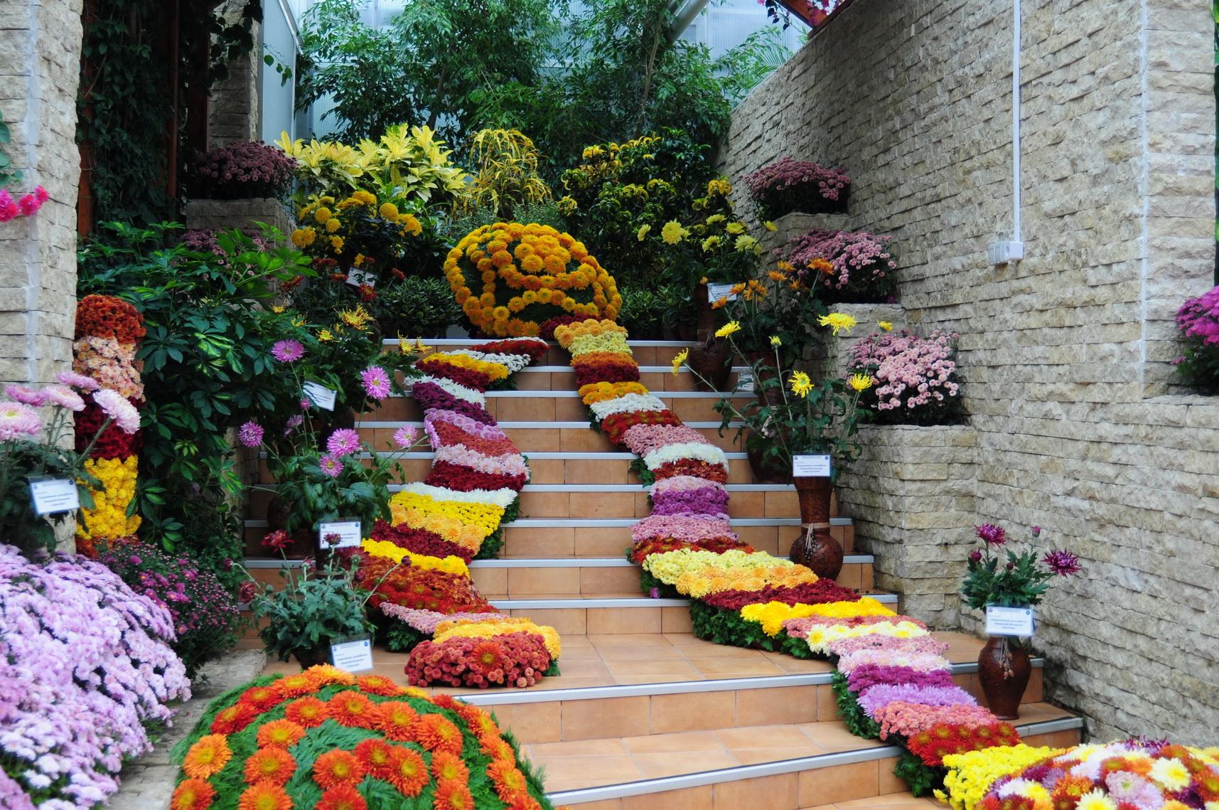 grădina-botanică-iaşi