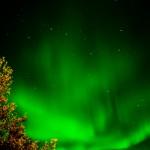 Auroră polară surpinsă într-o noapte polară în Harads, Suedia