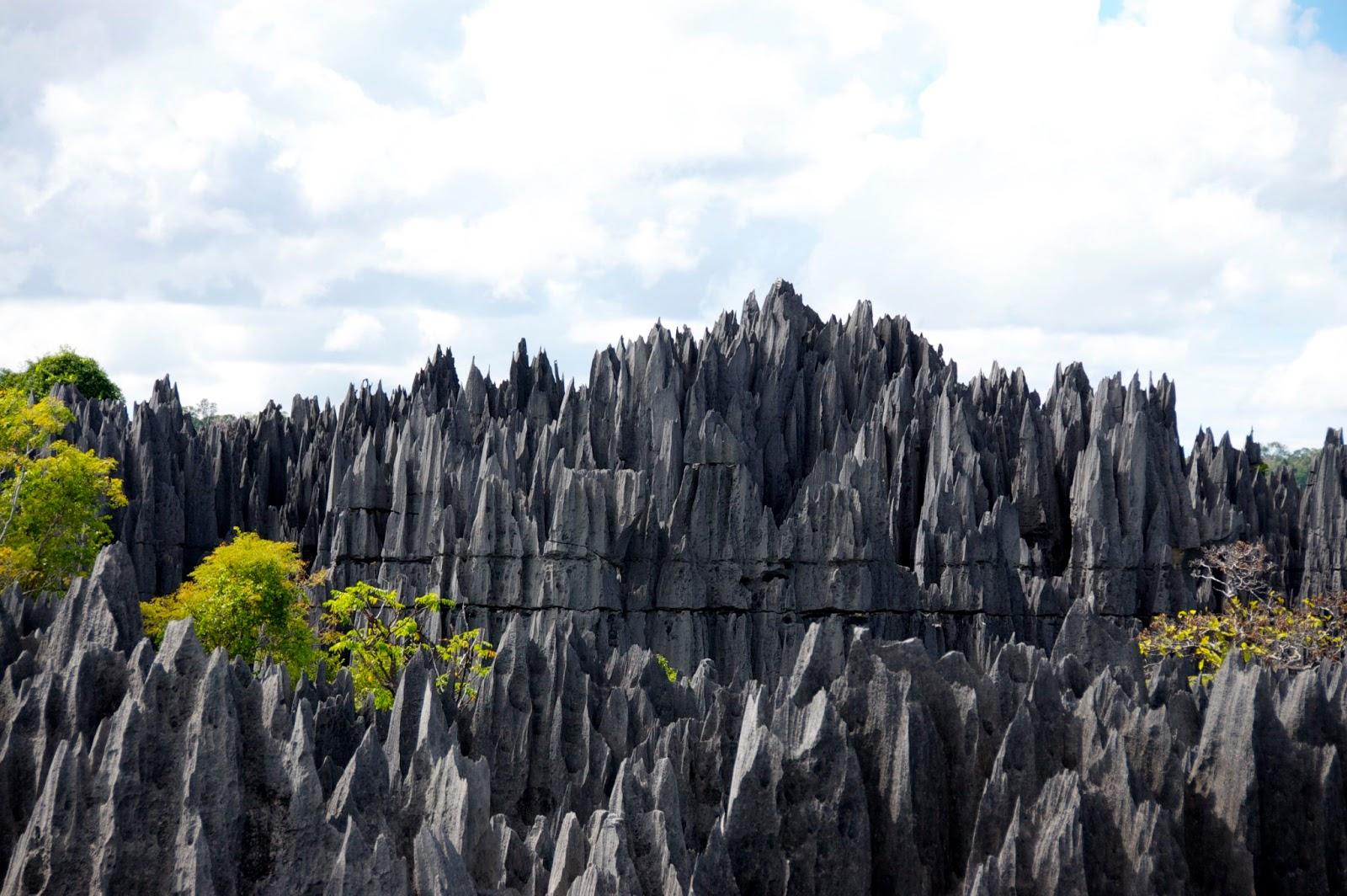 Pădurea de Piatră, China