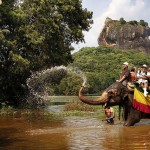 Sigiriya, Sri Lanka, plimbări cu elefantul