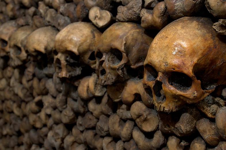 Zid de oase, Catacombele Parisului