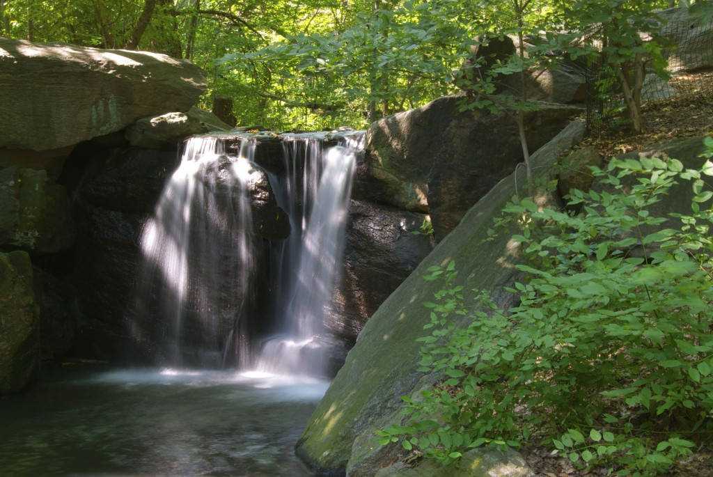 waterfall-in-central-park
