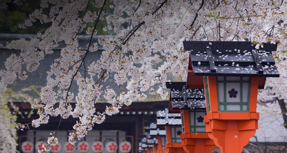 Altarele de rugăciune denumite Shinto, Kyoto, Japonia