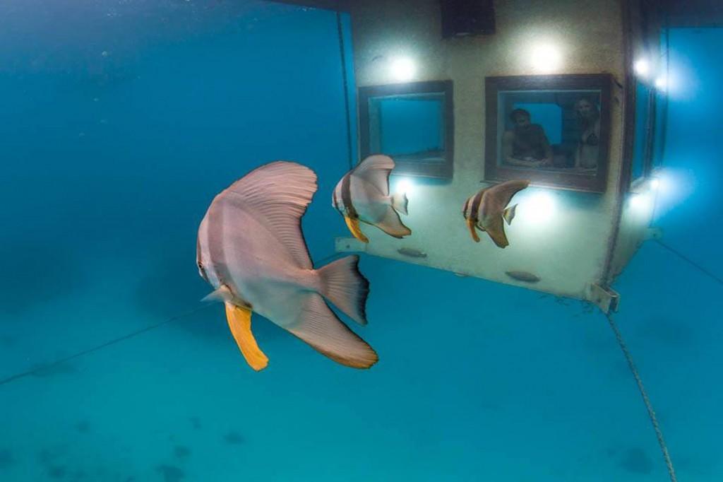 Camera subacvatica este bine ancorata