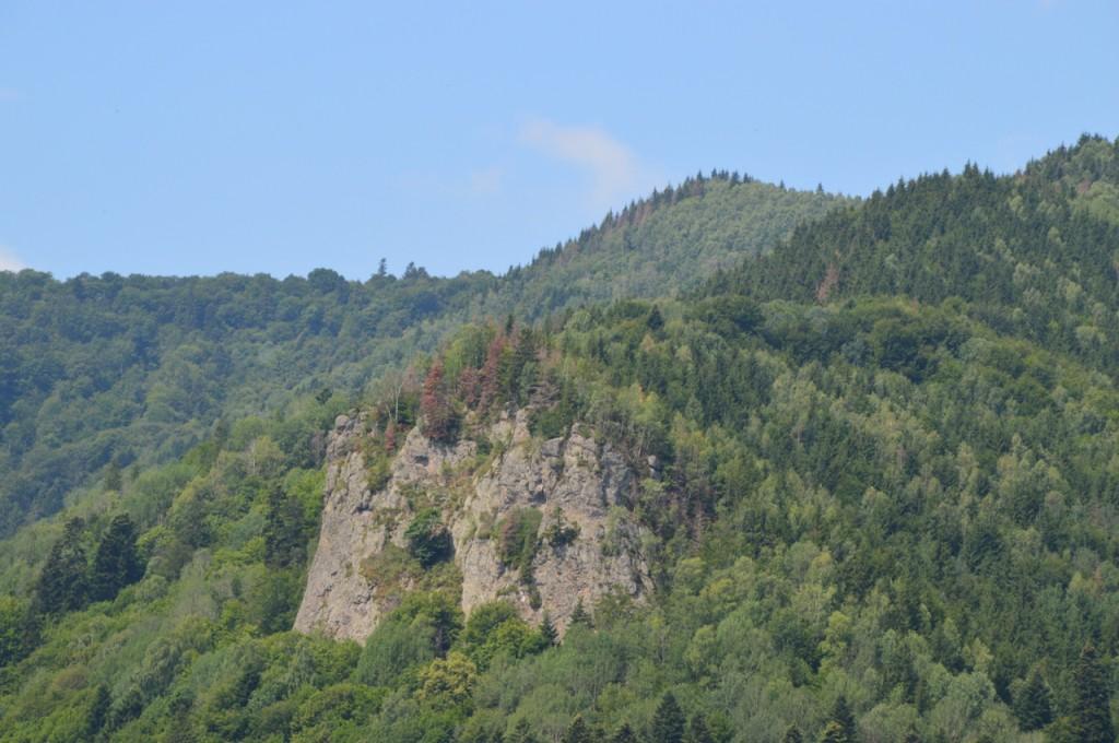 Culmile împădurile din împrejurimile stațiunii