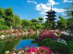 Grădină publică din Kyoto, Japonia