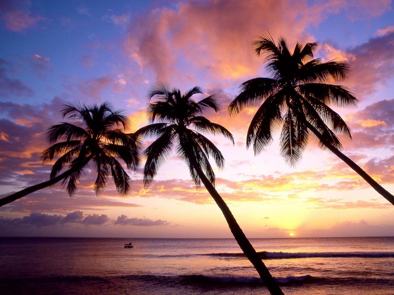 Insula Barbados, Coasta de Vest