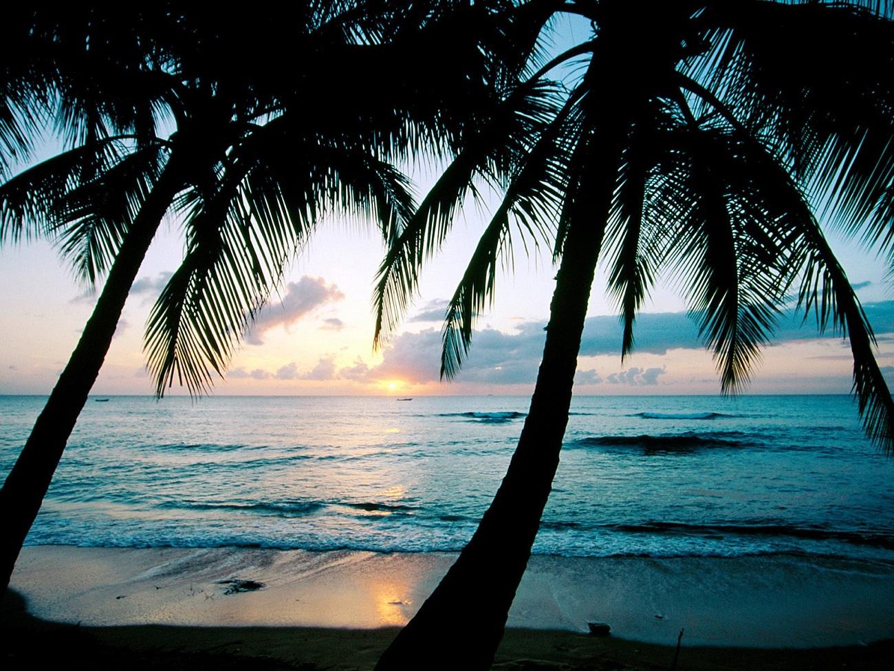 Insula Barbados