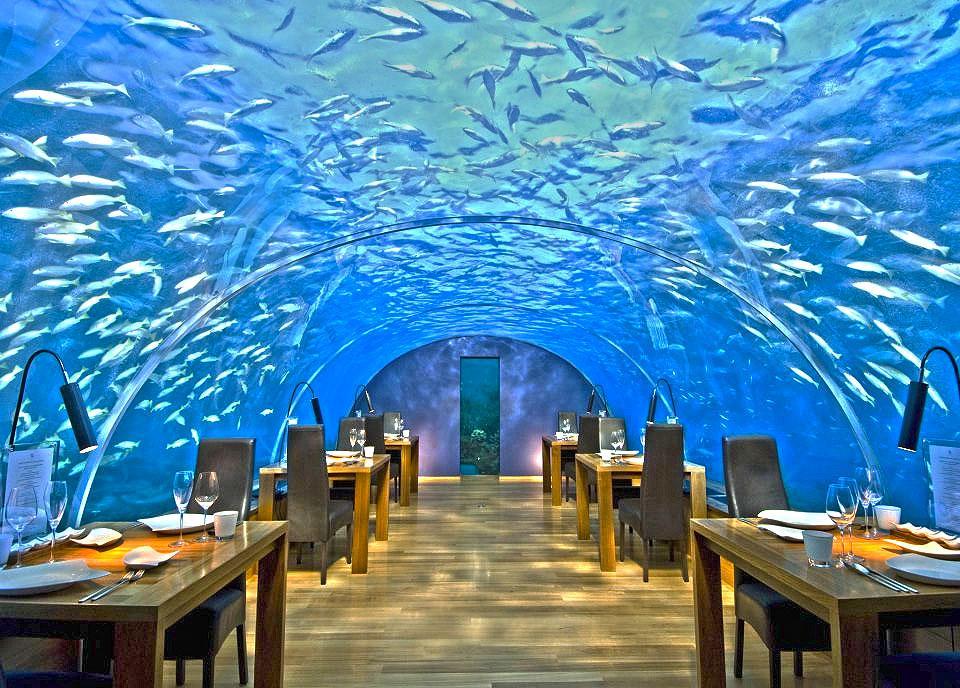 Ithaa, restaurantul subacvatic din Maldive