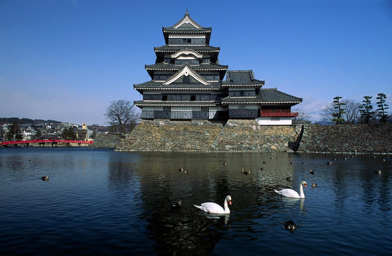 Lebede albe şi raţe sălbatice şi-au găsit loc pe apele ce încojoară Castelul Matsumoto