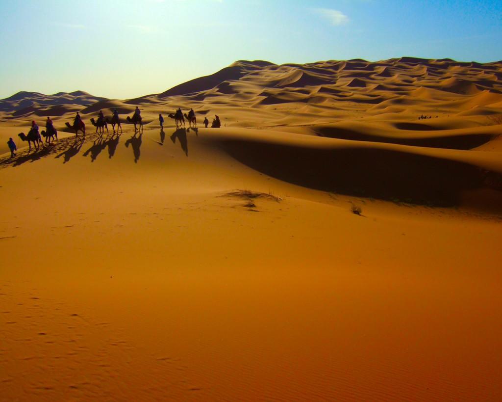 Maroc, cămile prin deșert