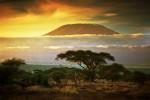 Muntele Kilimanjaro, Tanzania
