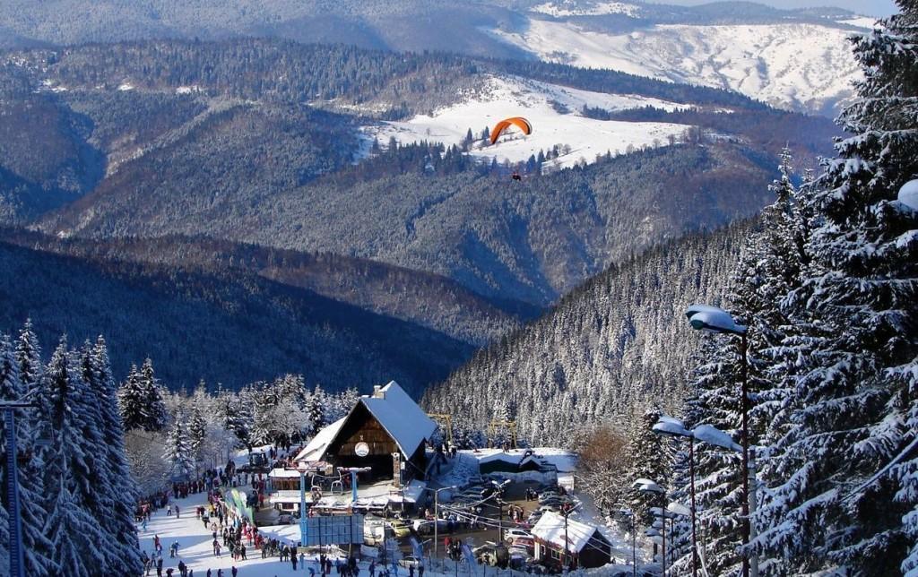 Paltiniș