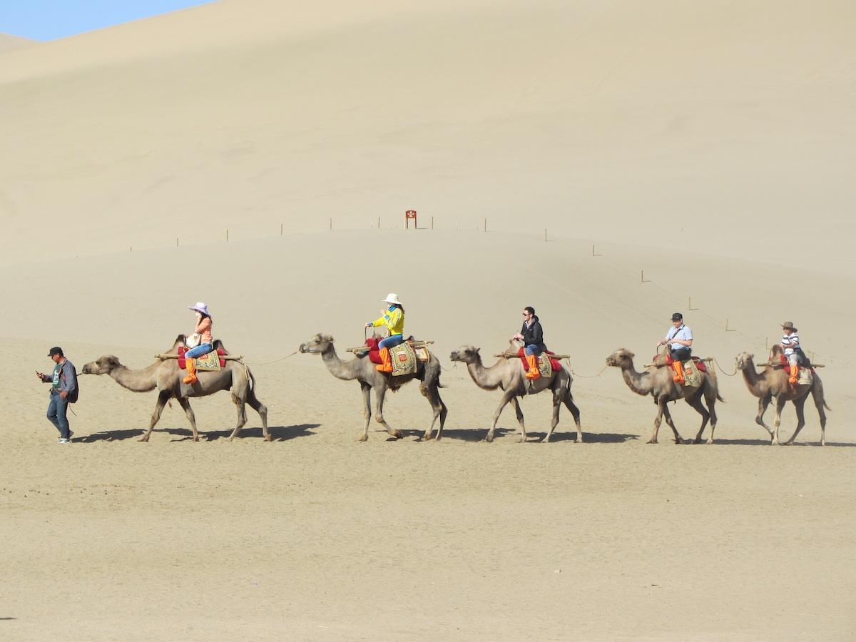 Plimbare pe cămile în Deşertul Gobi