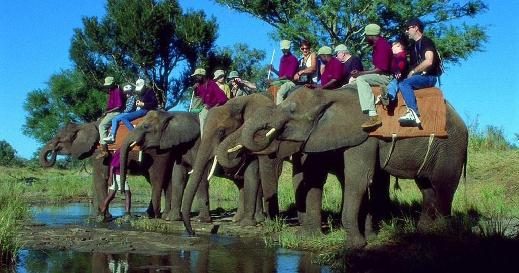 Plimbare pe elefant în apropiera Cascadei Victoria