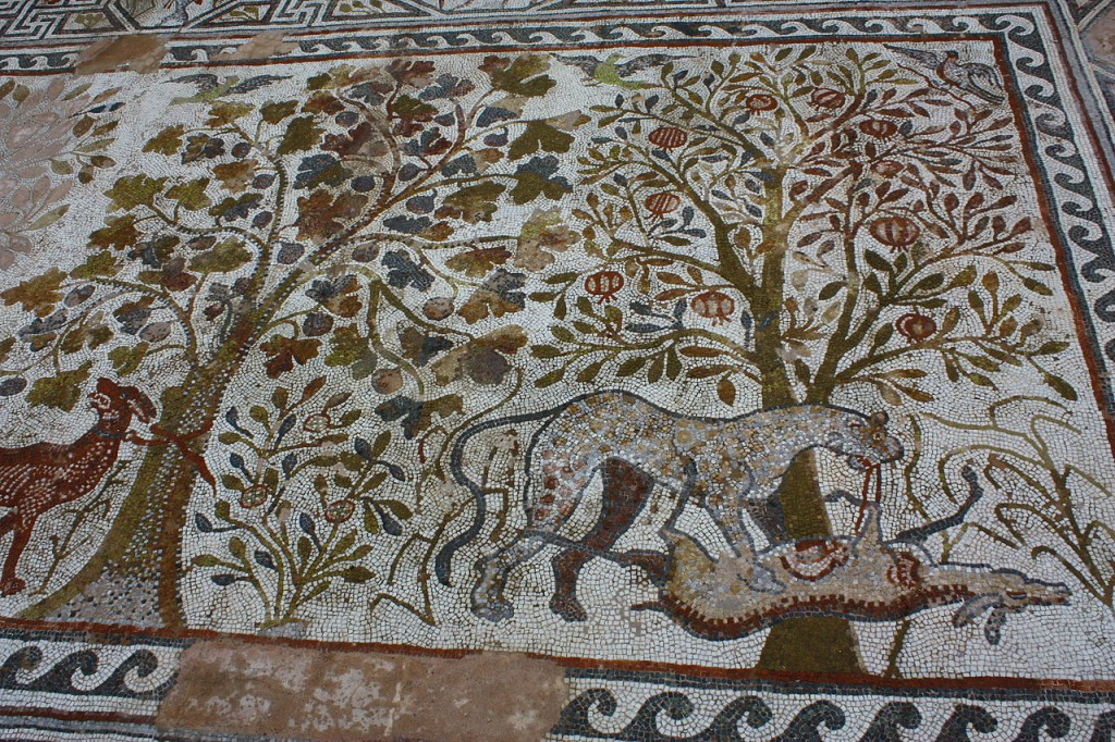 Unul din multele mozaicuri din Heraclea Lyncestis