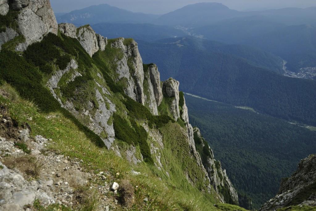 Vara pe munte traseele turistice sunt absolut suprinzătoare prin frumusețea lor