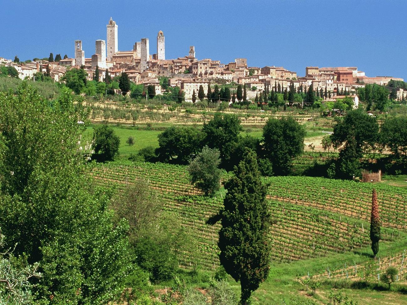 Dealurile din jurul regiunii San Gimignano sunt cultivate cu viţă de vie