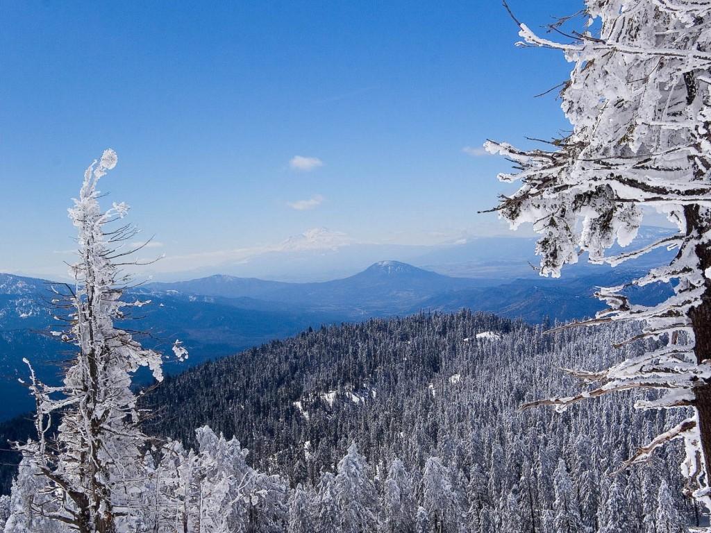 Iarna la Predeal de pe munte