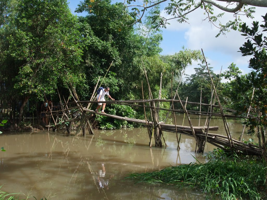 Monkey Bridge Vietnam