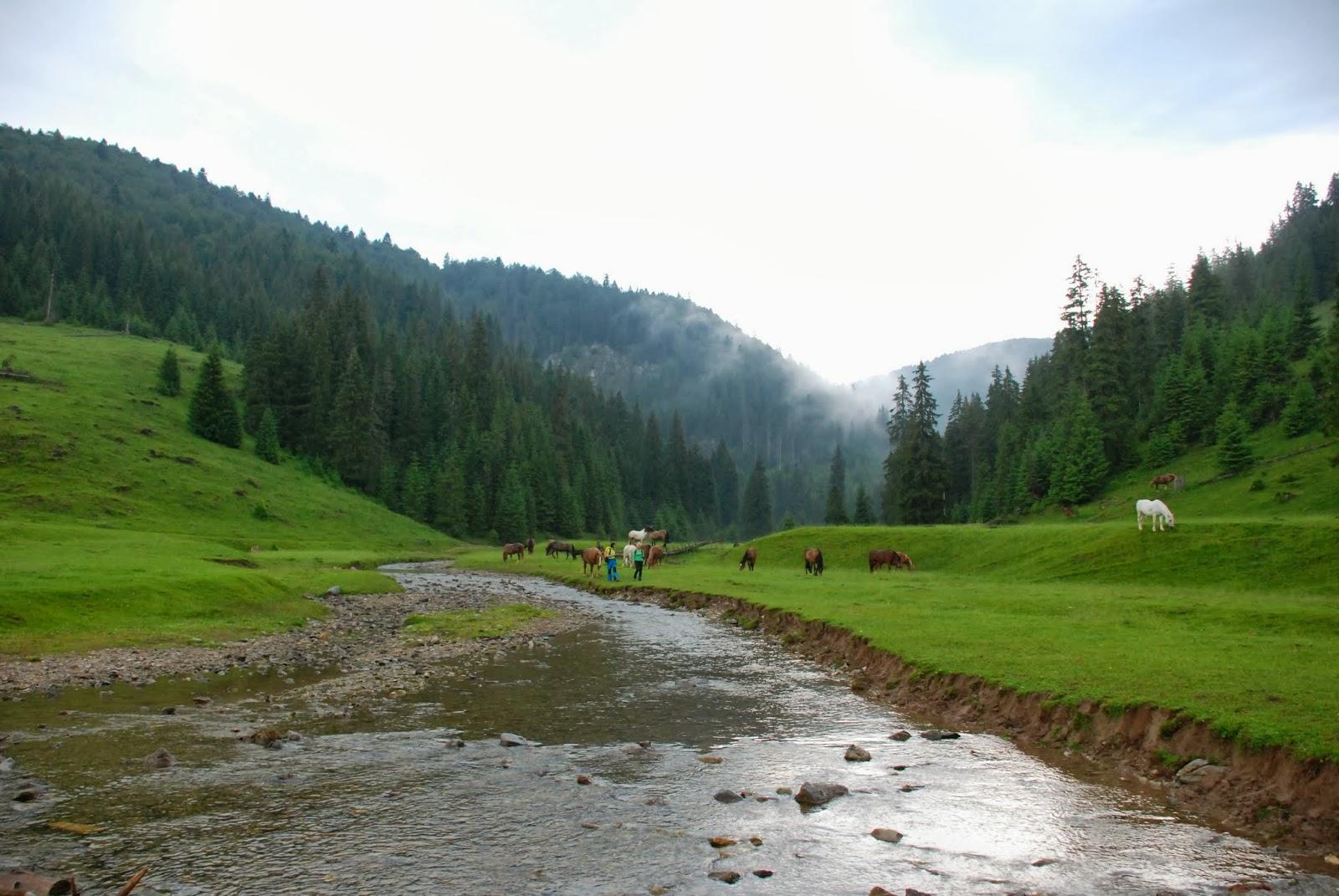 Munții Apuseni, pur și simplu nu te poți sătura de ei