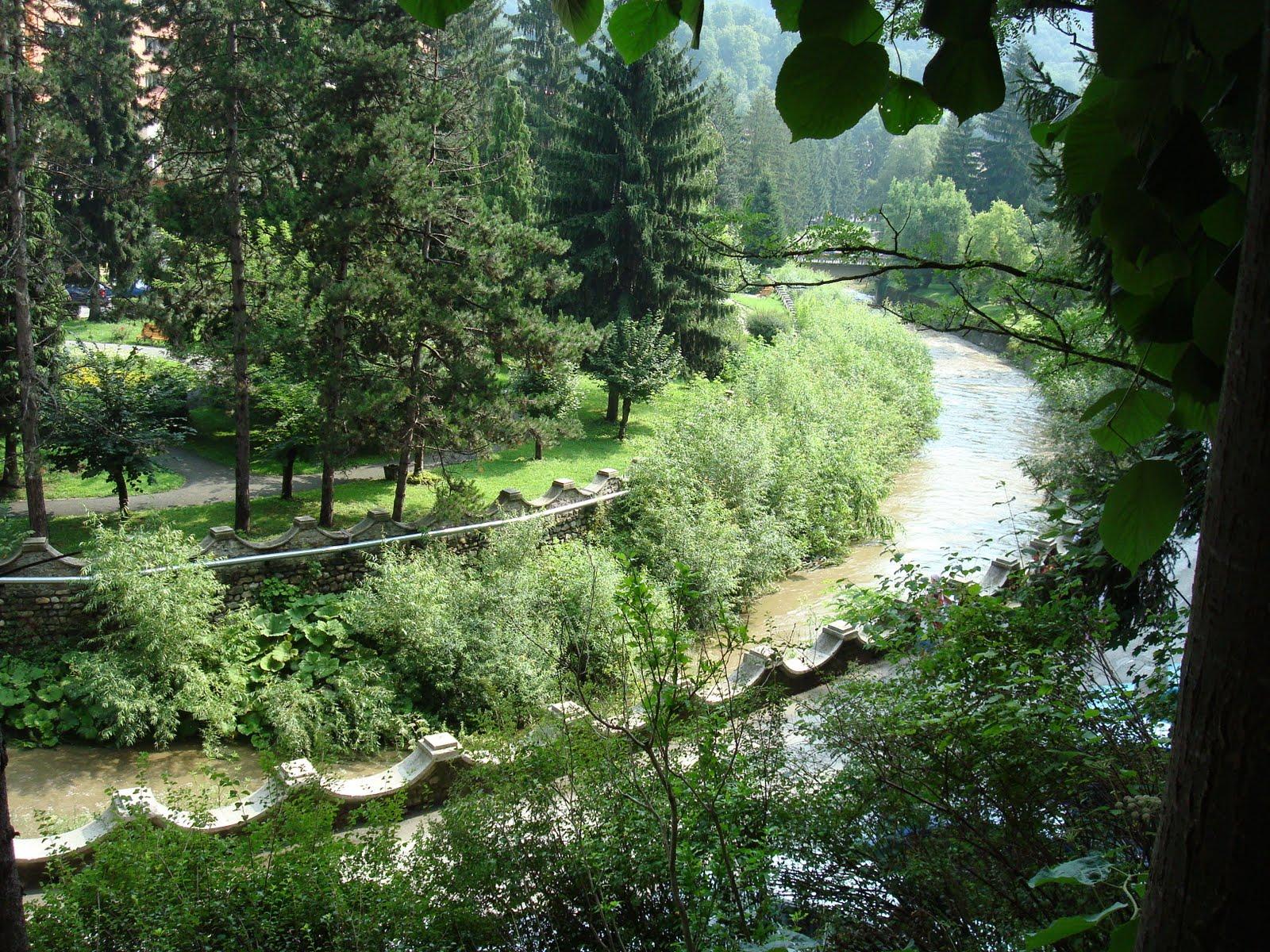 Natura în toată frumusețea ei la Băile Olănești