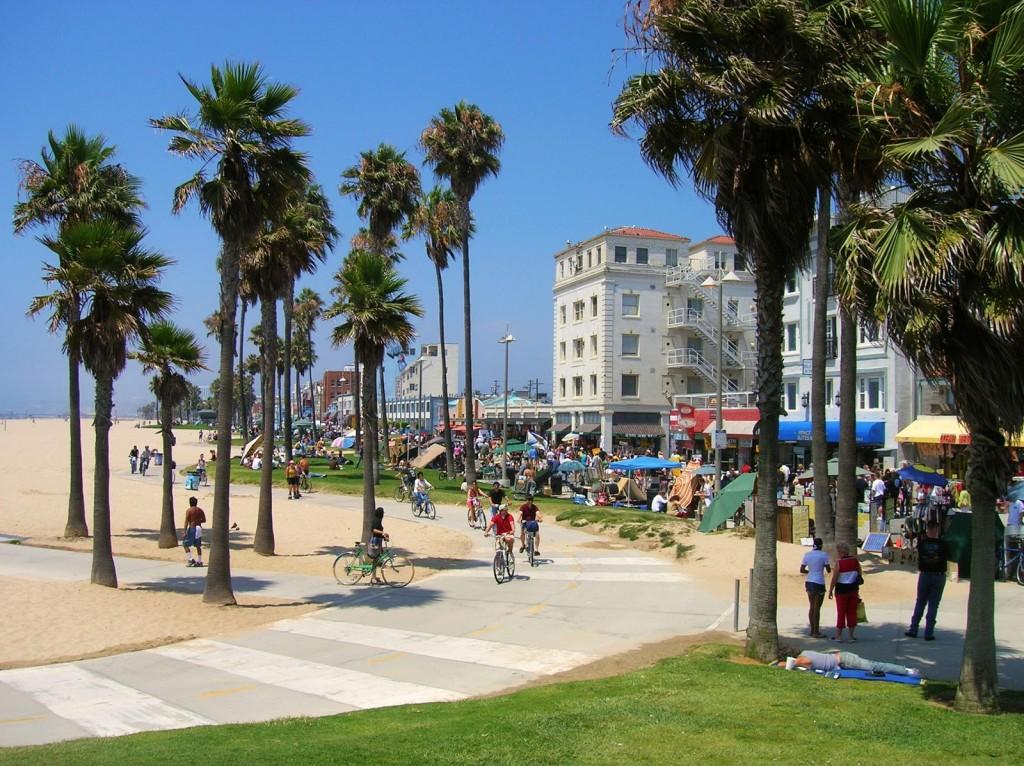 Palmieri și plaja Venice Beach