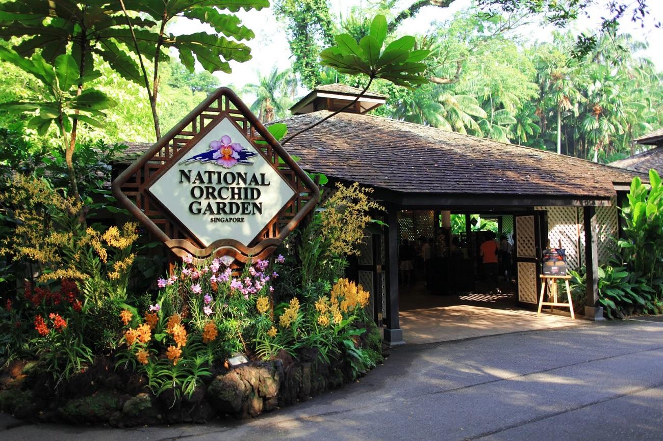 Rezervația Naturală din Singapore include o grădină de orhidee, floarea națională a statului