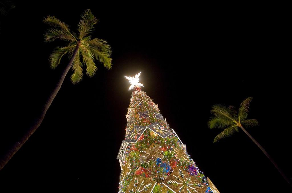 Silent Night în varianta cu palmieri