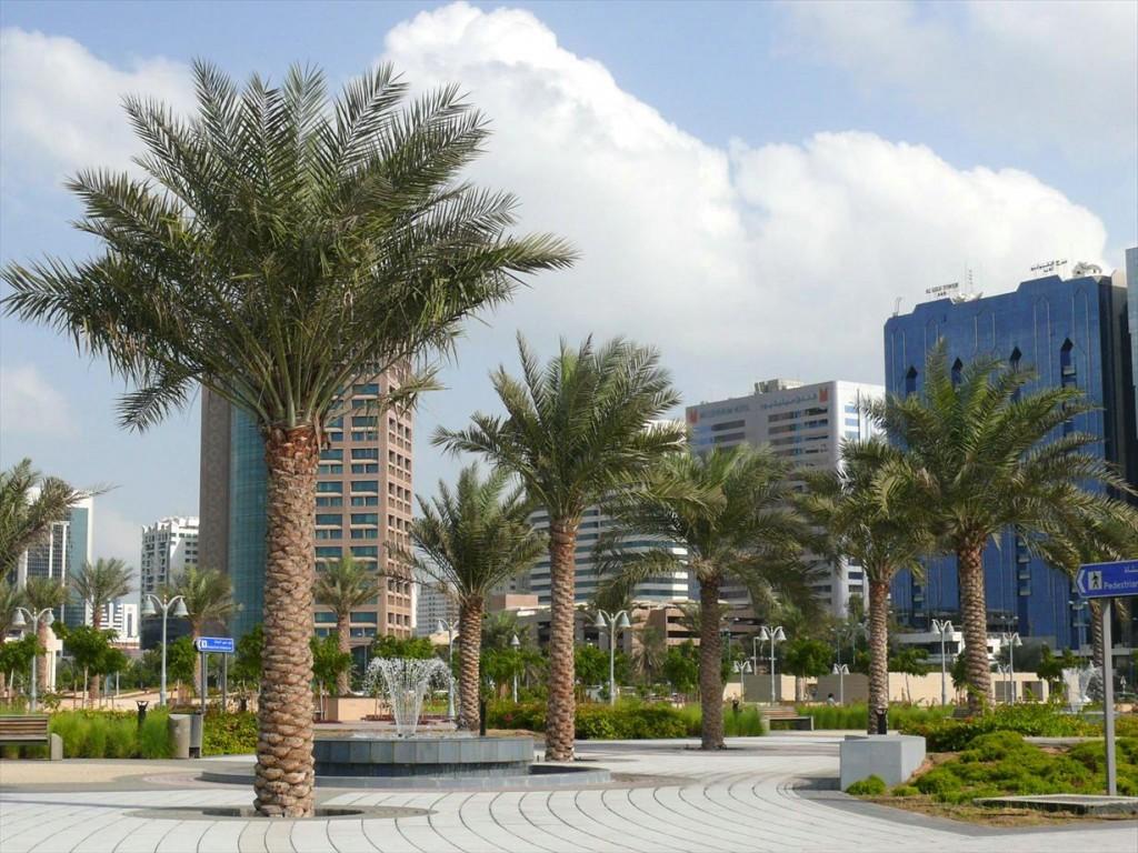 Spațiile verzi sunt foarte răspândite în Abu Dhabi și la fel și artezienele