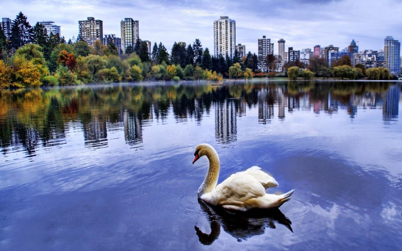 Stanley Park, o splendoare în Vancouver
