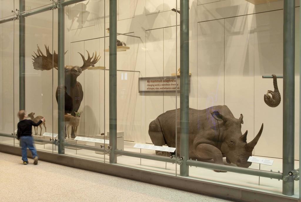 Un muzeu cu exponate incredibil de realiste