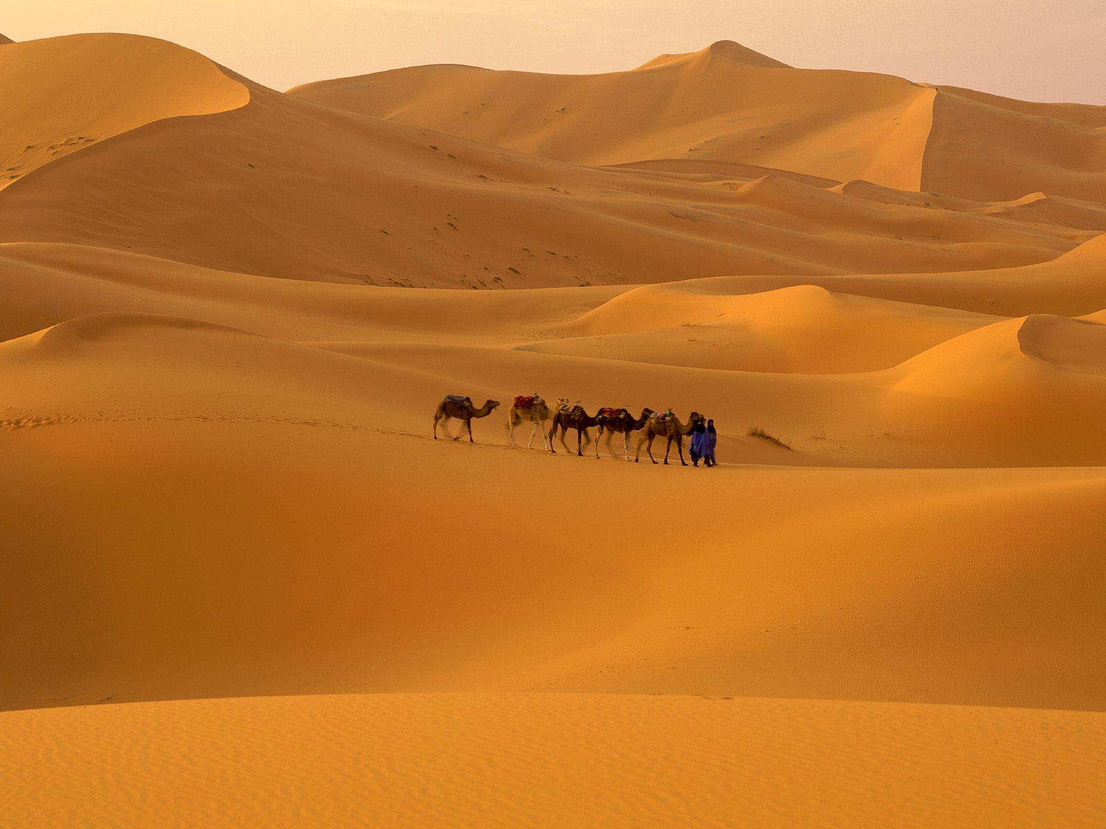 Deşertul Sahara din Maroc