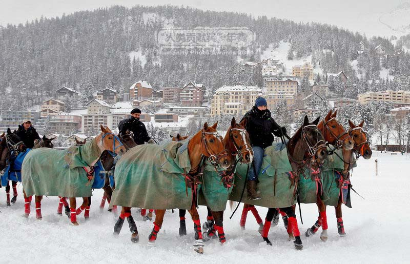 Anual, în Saint Moritz au loc curse de cai
