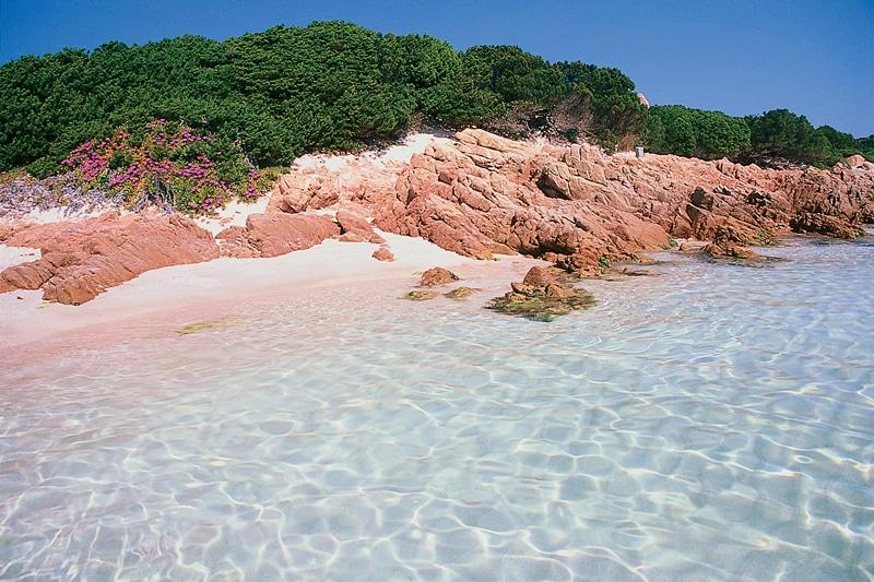 Plaja roz de pe Insula Budelli, Sardinia