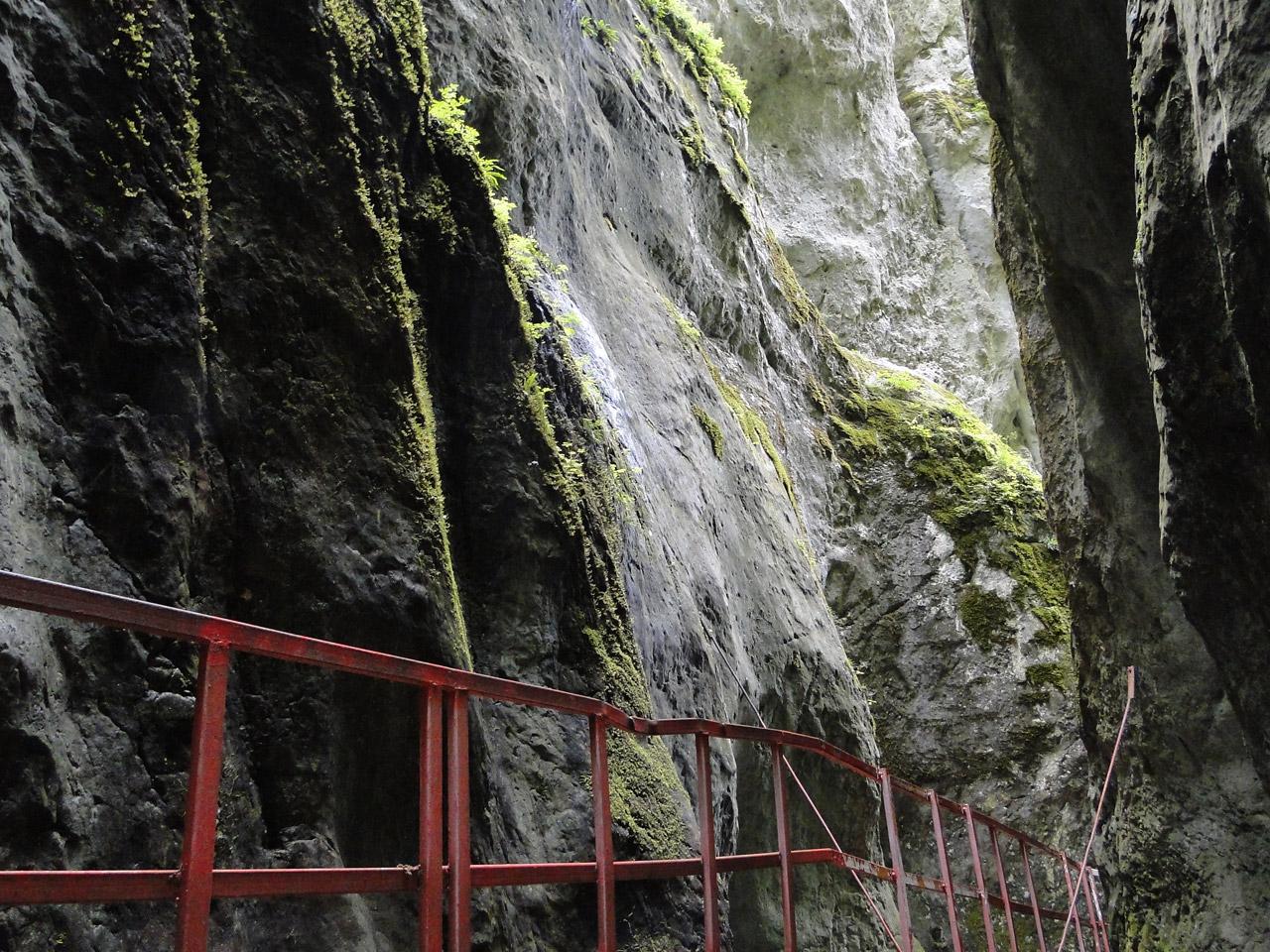 Canionul 7 Scări, interior