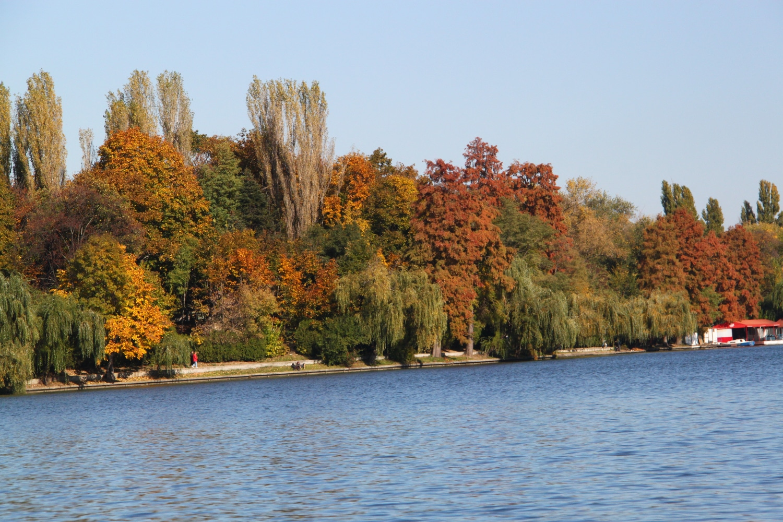 Culori de toamnă în Parcul Herăstrău