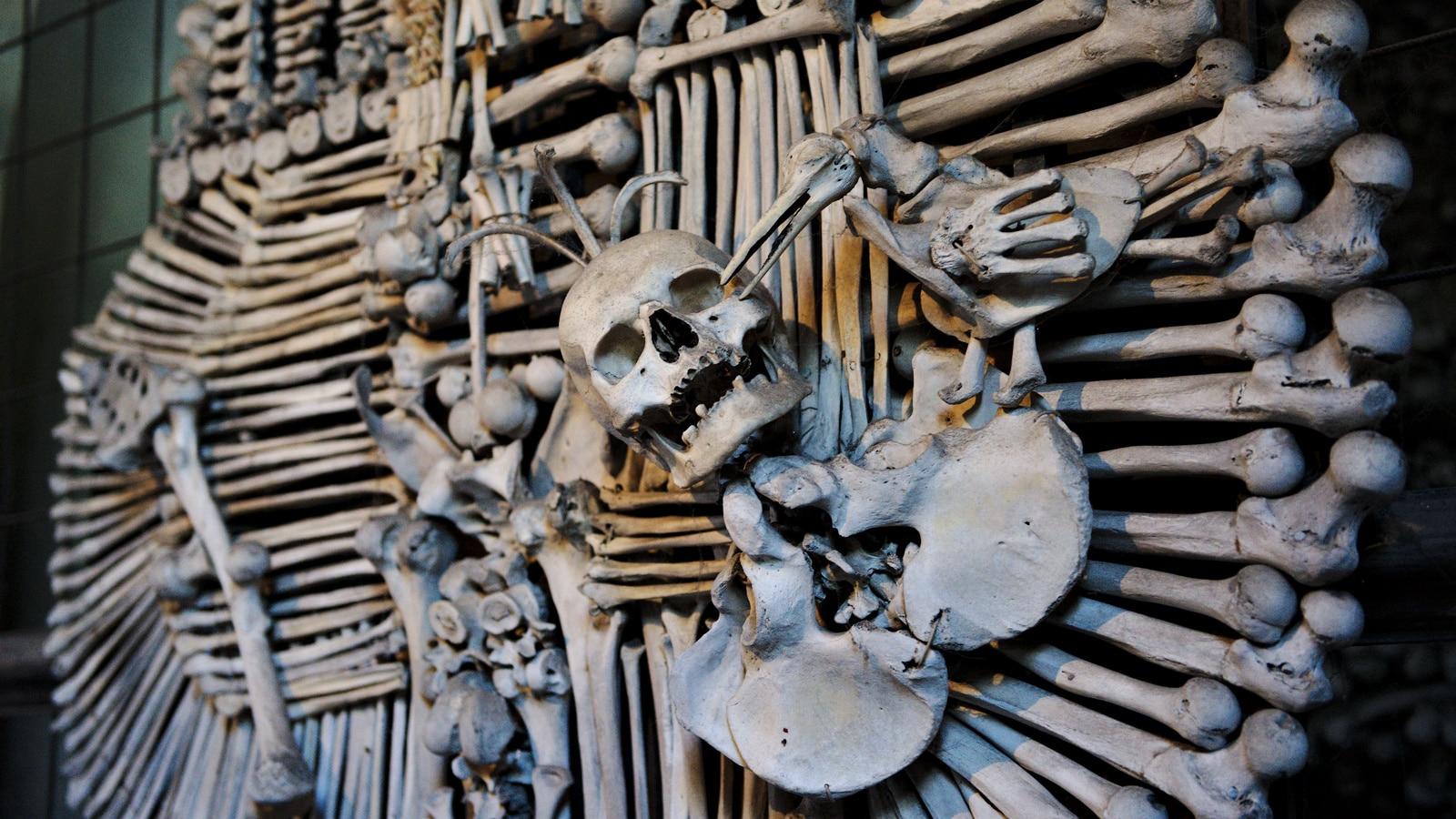 Decorațiile din Biserica Oaselor sunt opera lui Frantisek Rint