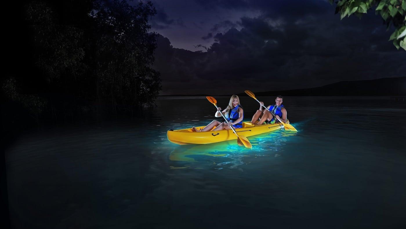 Golfurile bioluminescente sunt o splendoare în Puerto Rico