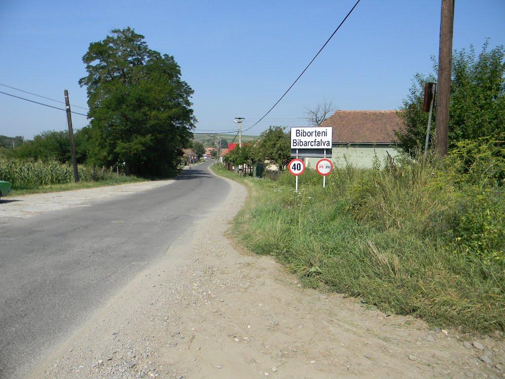 Intrarea în mica comună Biborțeni