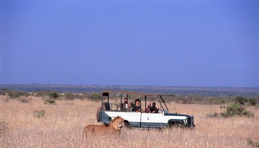 Safari în Loisaba, Kenya