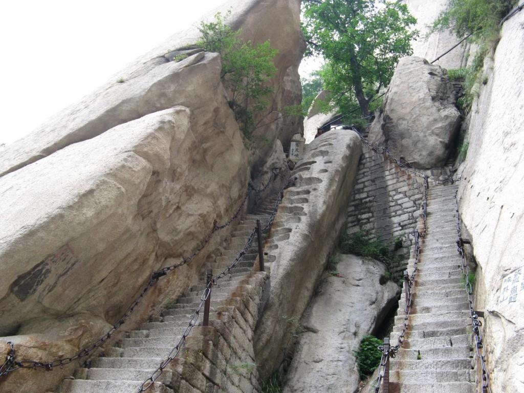 Oare care dintre trepte au fost primele