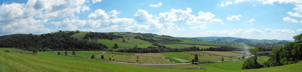 Panorama din zona localității Biborțeni