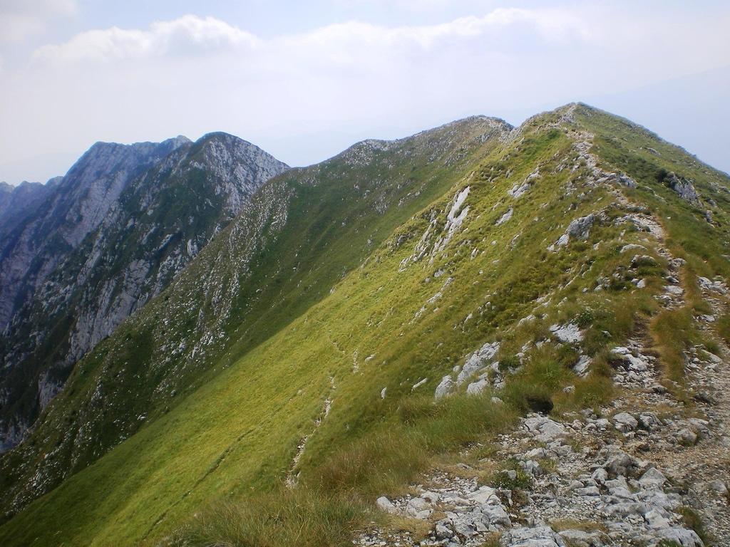 Pe culmi de munte