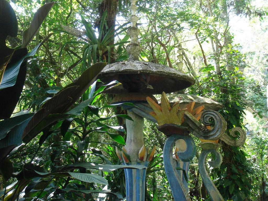 Pete de culoare în junglă