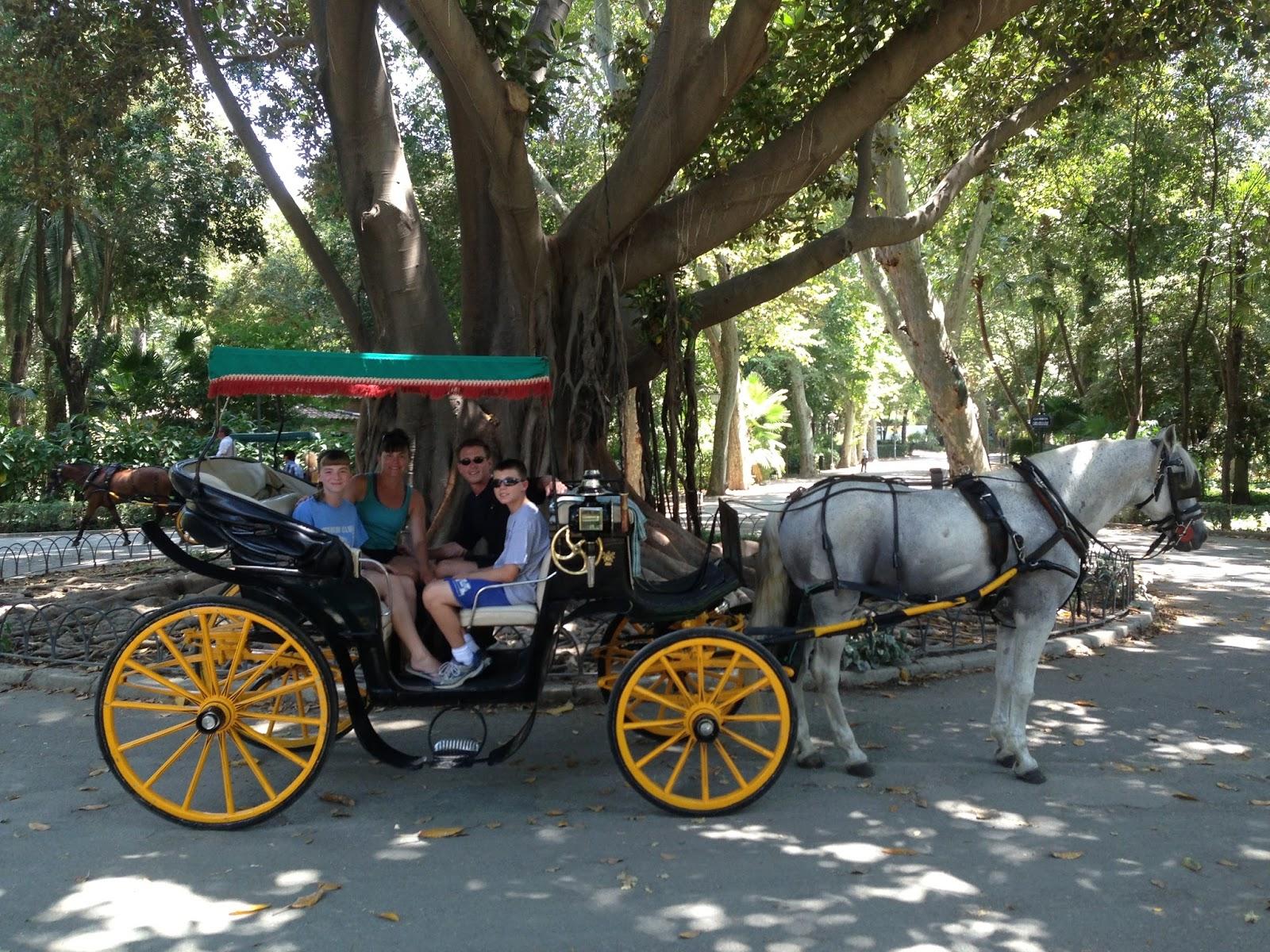 Plimbările cu cai sunt cele mai populare activităţi din parc