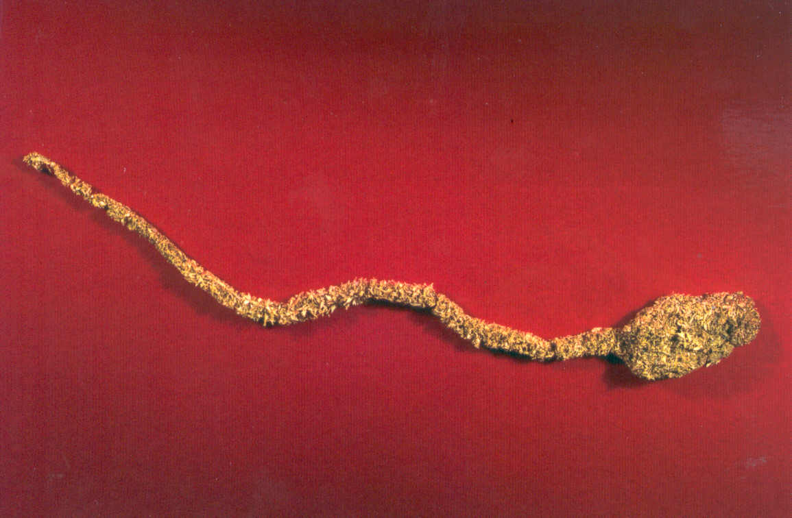 Exponate din Muzeul Aurului din Brad