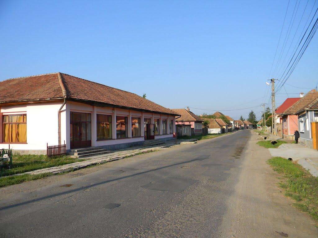 Zona este foarte modest dezvoltată păstrând un autentic aspect rural