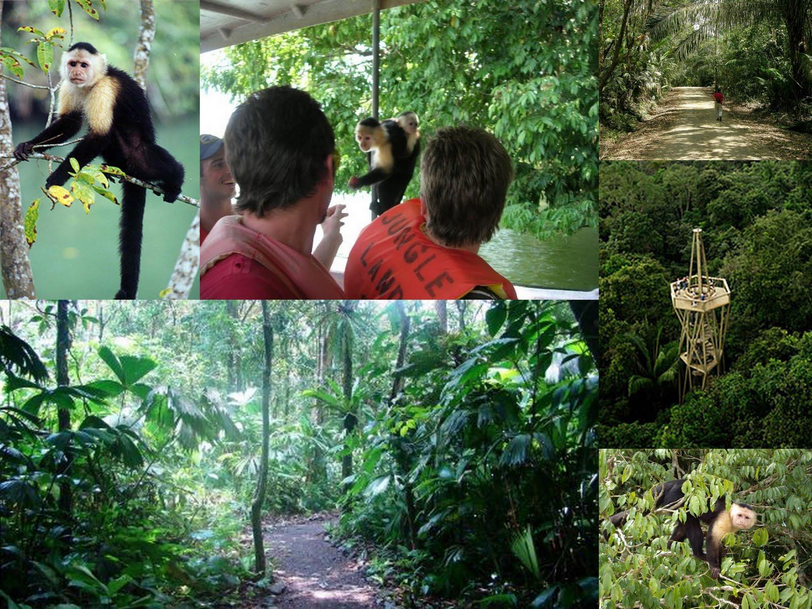 Parcul Național Soberania din Panama