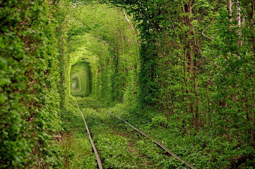 Cele mai spectaculoase locuri din lume - tunelul dragostei din Ucraina